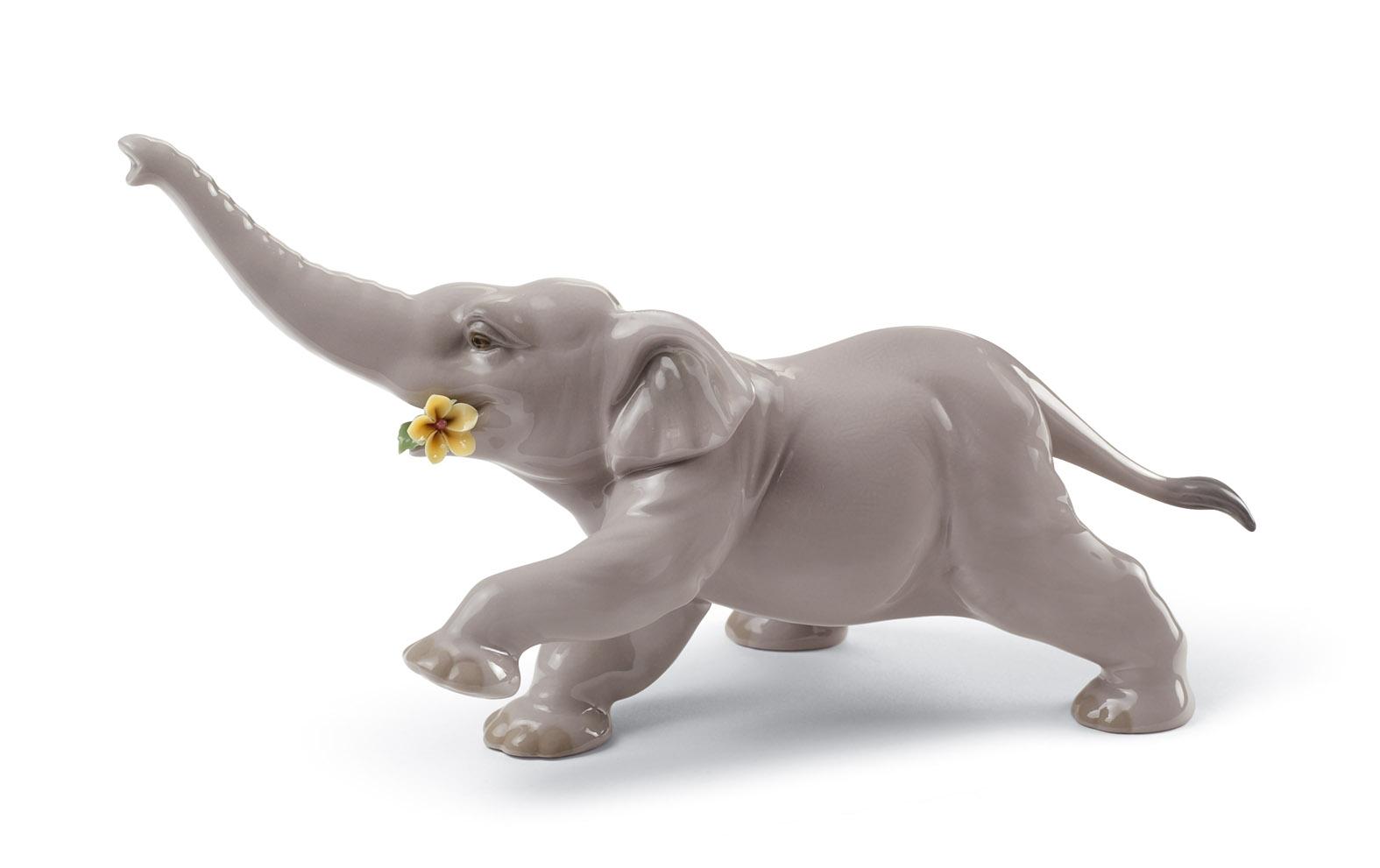 elefante bebè con fiore giallo